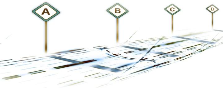 Project Roadmap Work Breakdown SDMX Project Management Guideline - Project roadmap